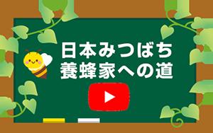 日本みつばち養蜂家の道